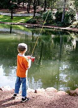 Australian Fishing Fishout Stocked Fishing Ponds Private